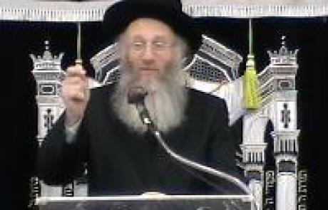 הרב יהודה אריה דינר – הלכות פאה ועבודה זרה , עלון מיים חיים גליון 44