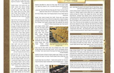 מסמר שער 2 עלון מתומצת בענין עבודה זרה בפאה , תחקיר,פסק מהרב משה שטרנבוך, הרב אברהם שלזינגר