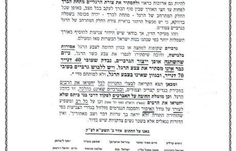 החצאית והגרביים – מכתב מגדולי ישראל
